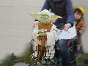 yoda-and-wicket-plushies-4