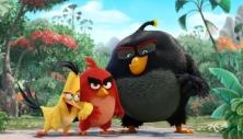 angry-birds-movie-image-e1453916622855-530x304